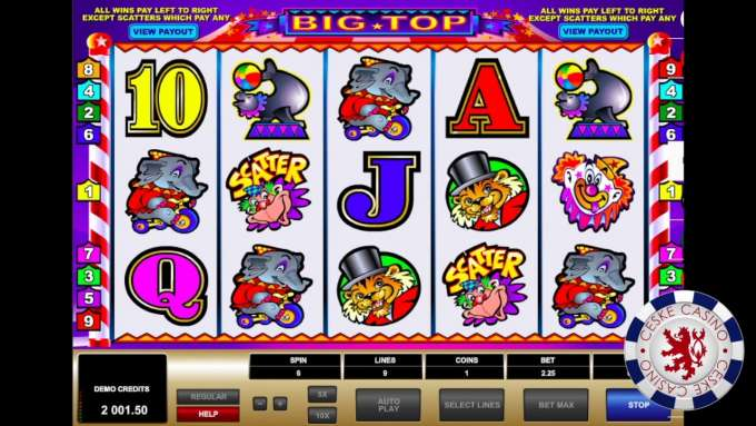 BIG TOP | 10 Free spins | Bob Casino